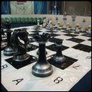 Шахматы Гигантские
